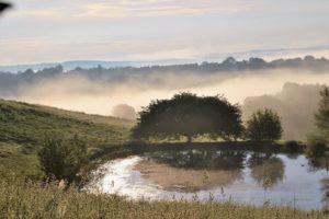 Brume sur la campagne
